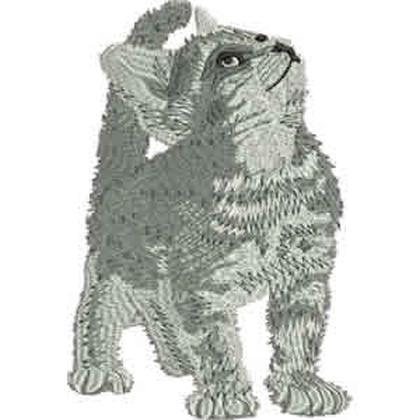 Realistic Kitten Embroidery Design