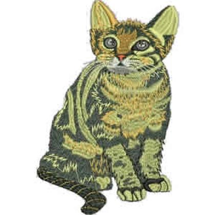 Cute Kitten Embroidery Design