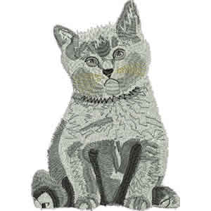 Gray Realistic Kitten Embroidery Design
