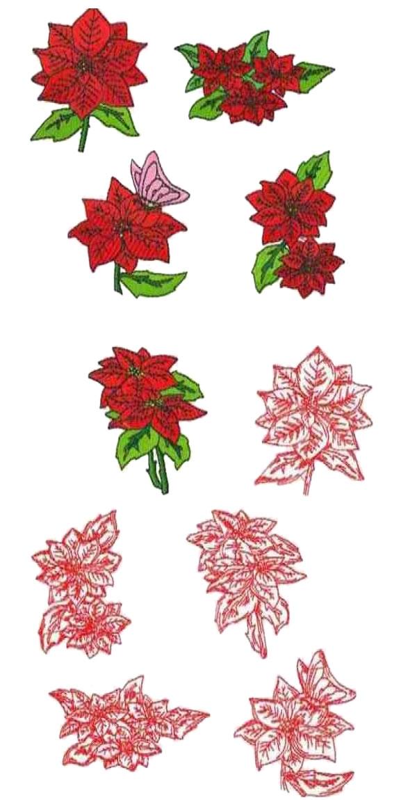 16 set of Poinsettias