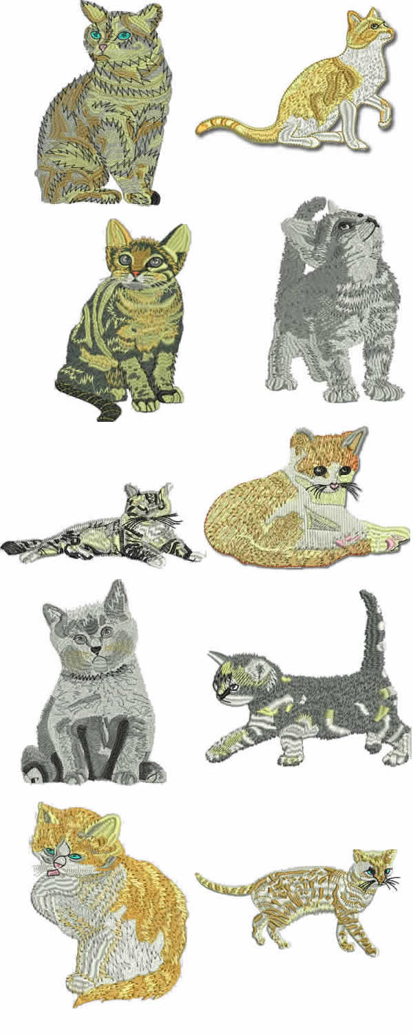 10 Set Realistic Cats