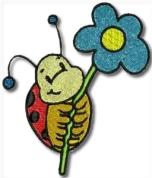 Flower With Ladybird