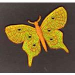 FSL Butterfly