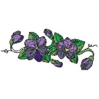 Violet Border Embroidery Design